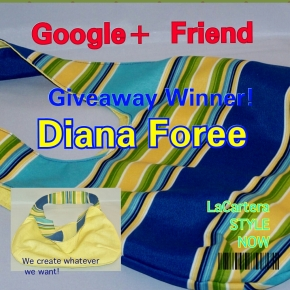 Google+ Friend Giveaway Winner!