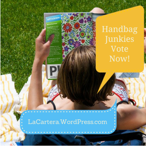 Handbag Junkies- Don't Miss Your Chance to Vote(Closed)