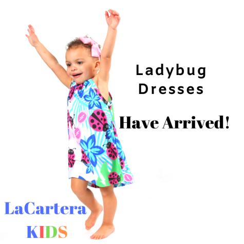 Ladybug Dresses